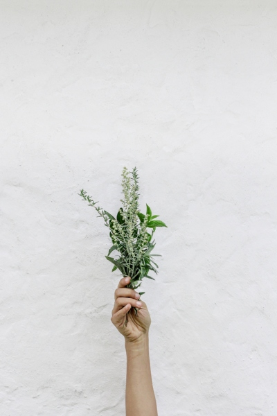 A fistful of herbs. How to do an Ayurvedic facial.