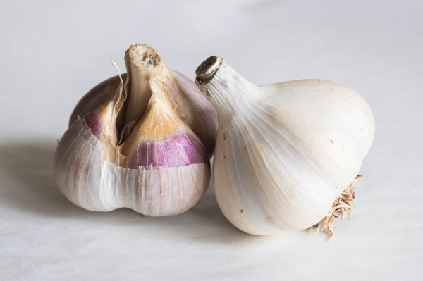 Garlic Benefits, Uses, Dosage, Side Effects, Precautions +
