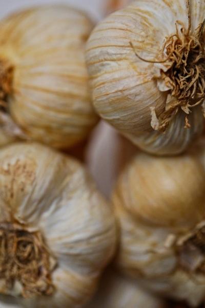 Garlic for heel spurs, calcaneal spurs, vatakantaka.