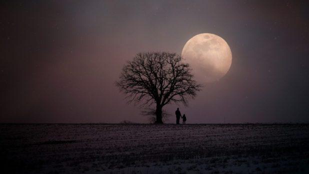 moonbathing What Is Ratricharya? Ayurvedic Nightly Regimen: Dietary + Lifestyle Guidelines For Nighttime