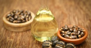 castor oil uses benefits ayurvedic applications