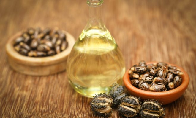 castor oil uses benefits ayurvedic applications