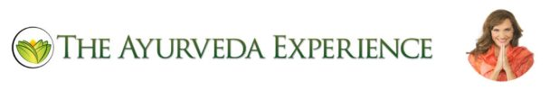 The Ayurveda Experience by Lissa Coffey