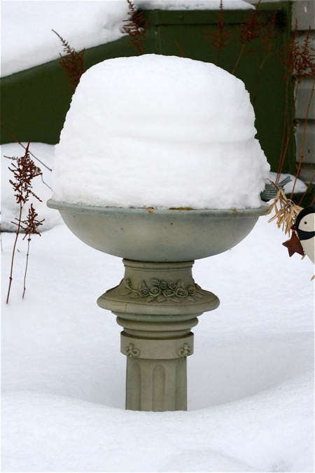 snow-in-bird-bath-2