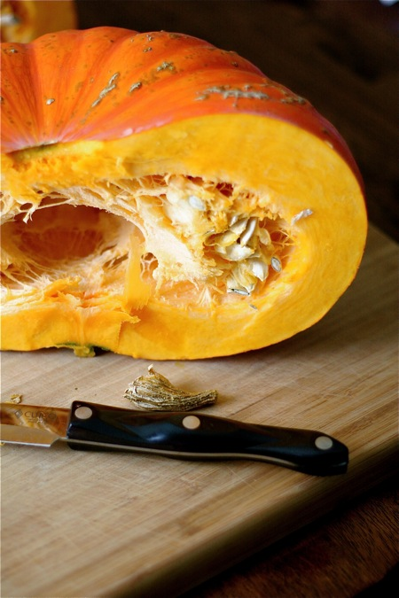 inside-of-pumpkin-rouge-vif-detampes