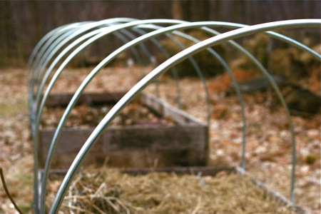 raised-beds-with-hoops1