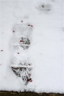 footprint-in-snow