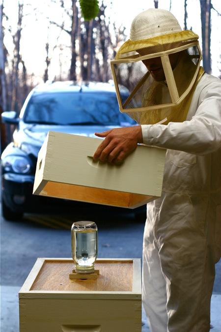 installing-bee-pacakge-7