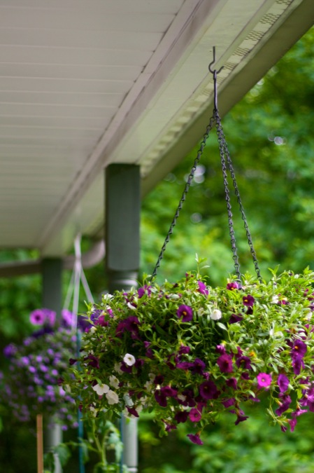 hanging baskets on porch