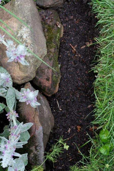 Edged_flowerbed