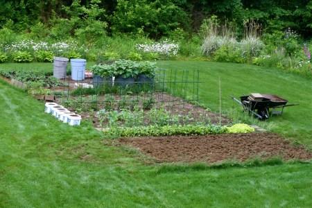 mom's_garden
