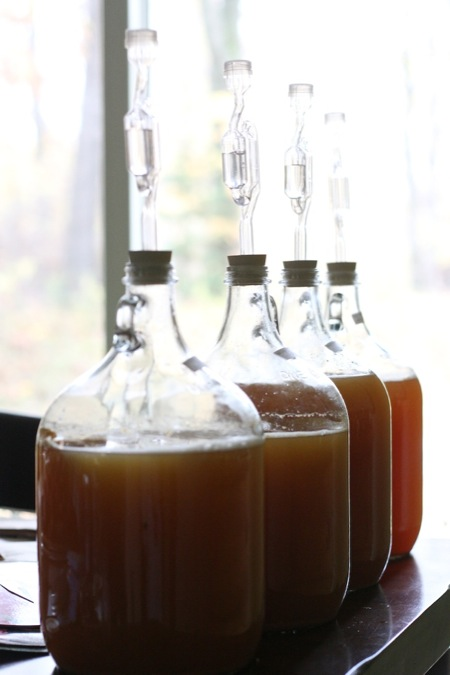Making Hard Cider | Chiot's Run