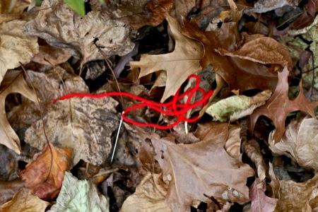 red_yarn_in_leaves