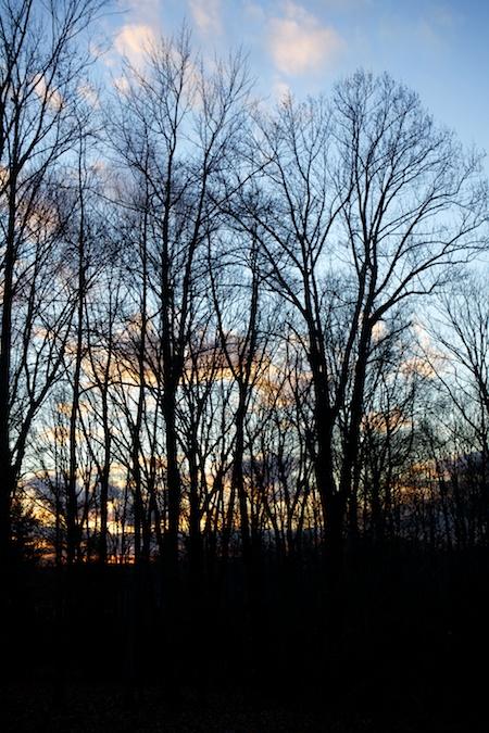 november_sunset