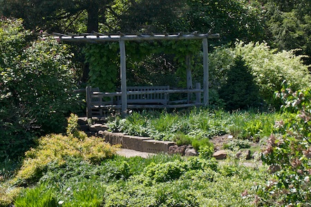 trellis_over_garden_benches