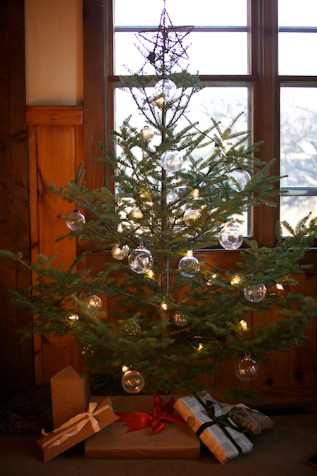 Christmas Tree 2013 3