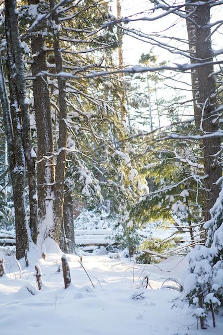 Sun and snow 3