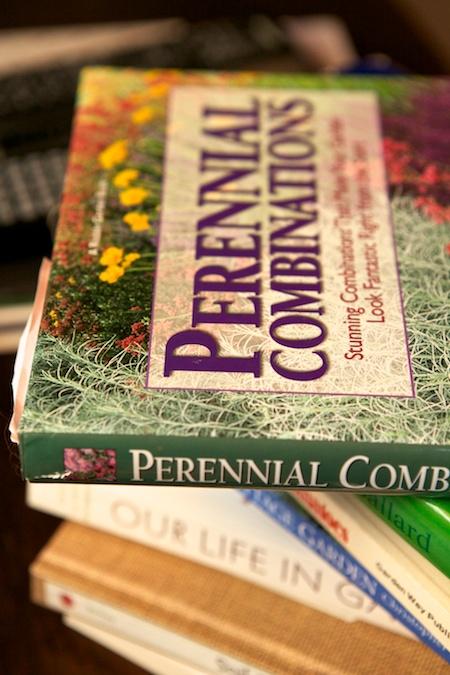 perennial combinations