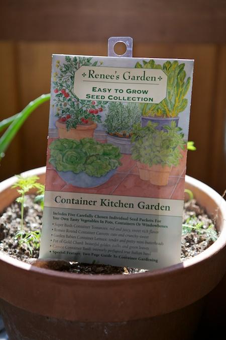 Renees garden container kitchen garden