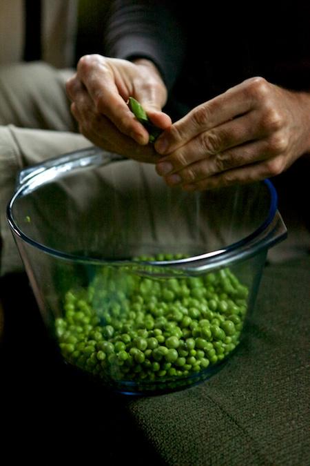shelling peas 3