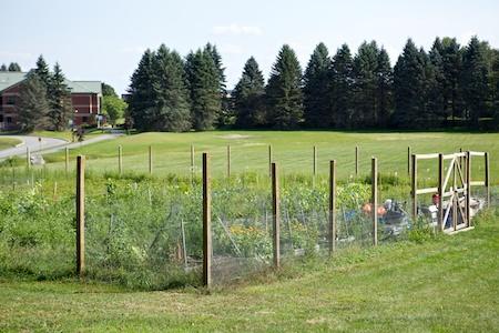 Augsta Gardens 10