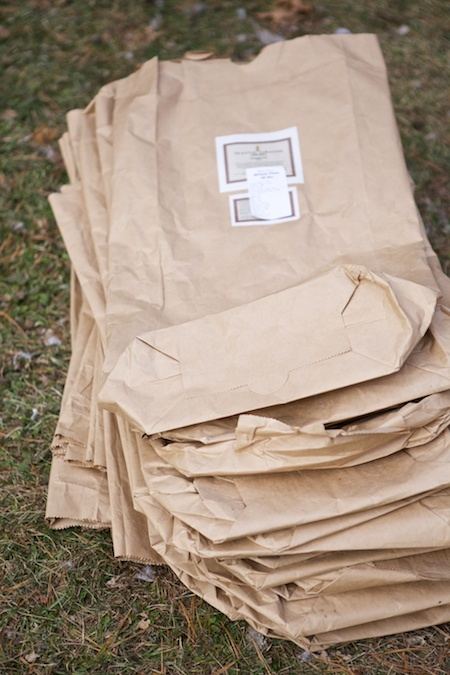 Feed Bags 1