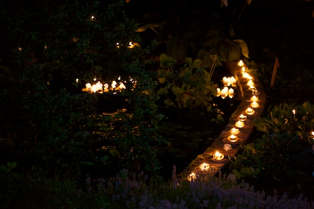 mclaughlin garden illuminated 14