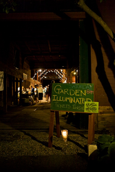 mclaughlin garden illuminated 16