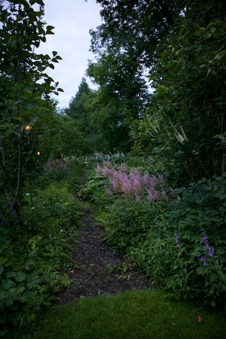 mclaughlin garden illuminated 6
