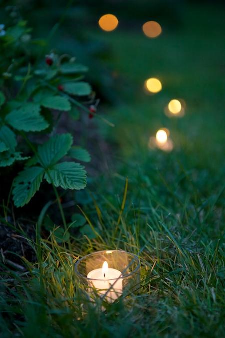 mclaughlin garden illuminated 9