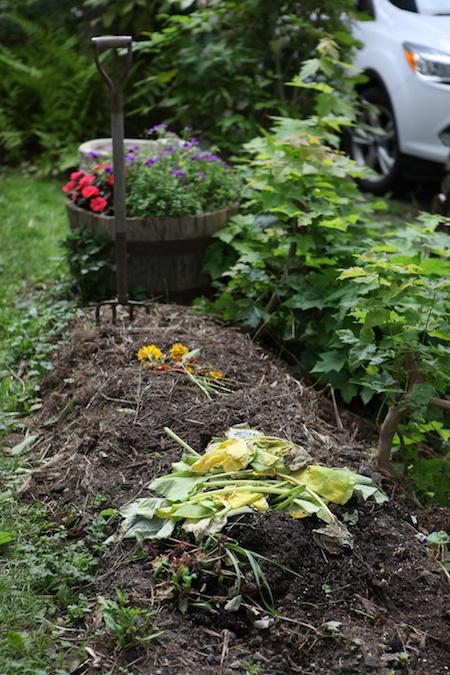 last garden in tour 4