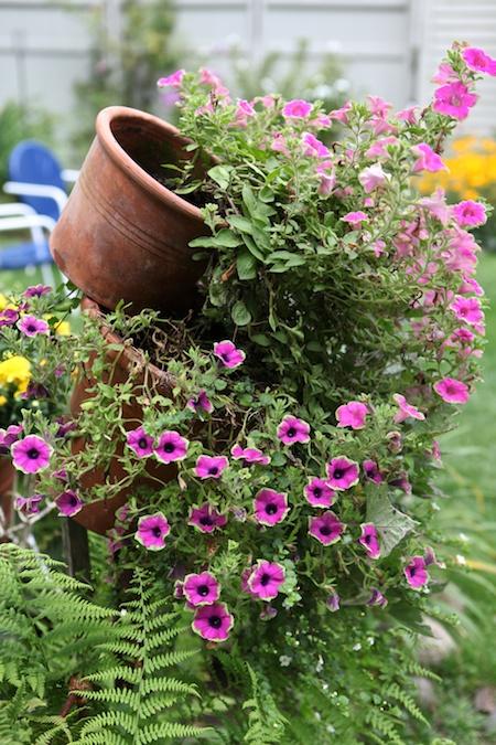 last garden in tour 6