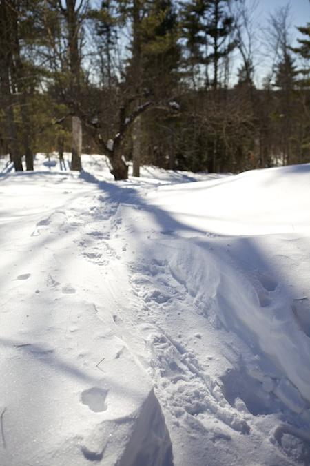 snow drifts 3
