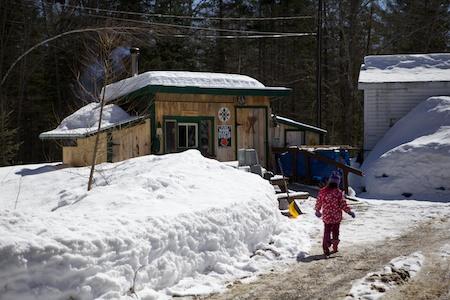 Maine Maple Sunday 12