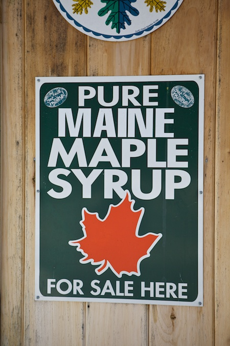Maine Maple Sunday 15
