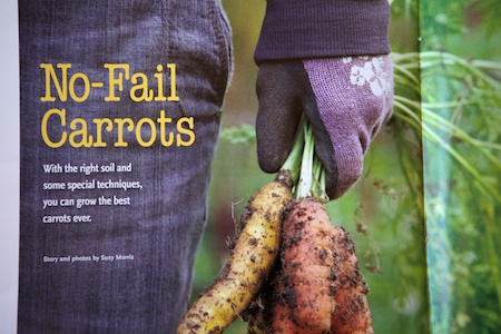 no fail carrots 2