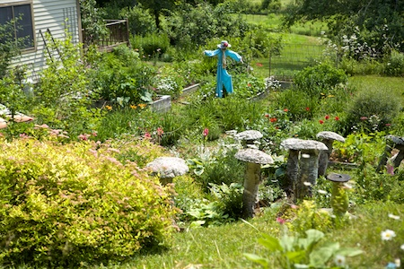 belfast garden tour 12