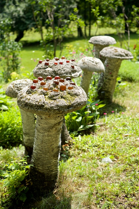 belfast garden tour 13