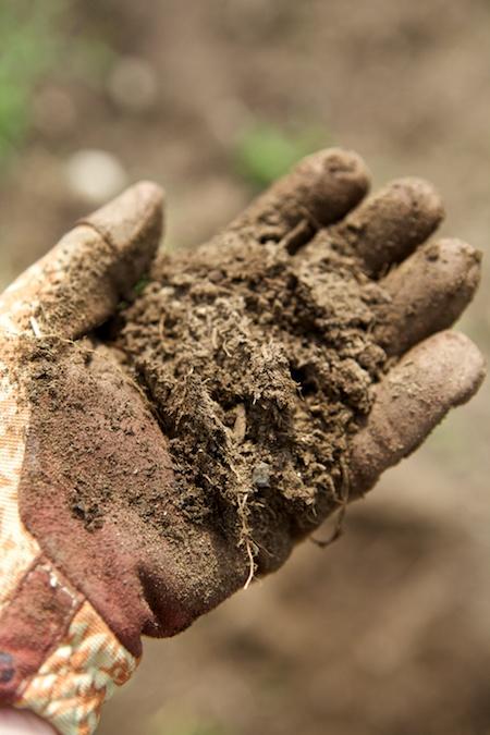 soil 2