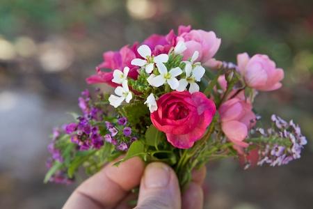 last flowers 3