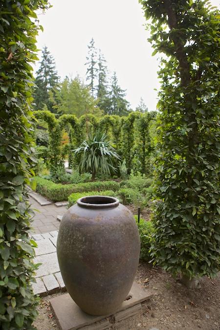 Herronswood hedge garden 5