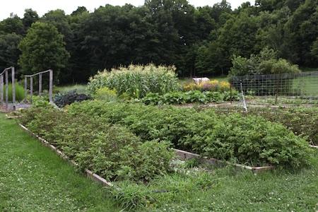 shelburne farms edible gardens 10