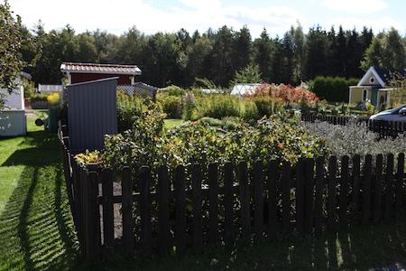 trip-to-sweden-4