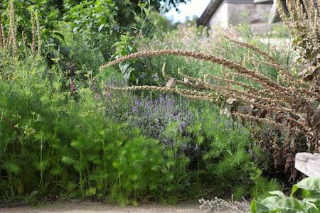 lacko-slatt-upper-garden-8