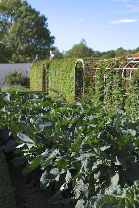 lacko-slatt-walled-lower-garden-1