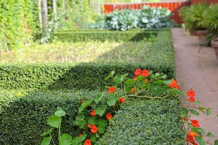 lacko-slatt-walled-lower-garden-15