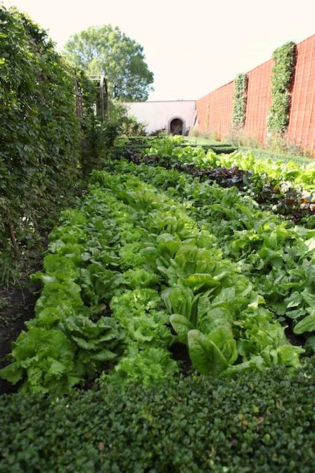 lacko-slatt-walled-lower-garden-8