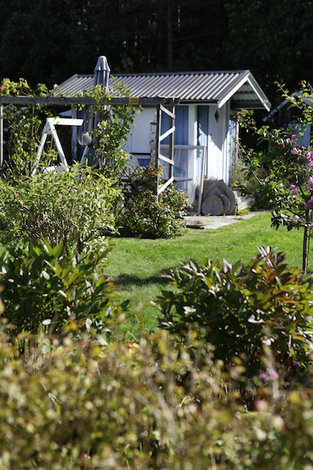 swedish-community-garden-day-4-6