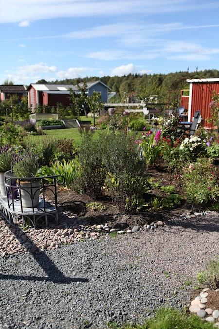 swedish_community_garden-10