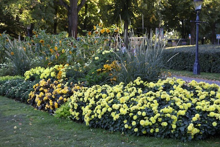 colorblock-gardens-at-stockholm-djurgarten-3